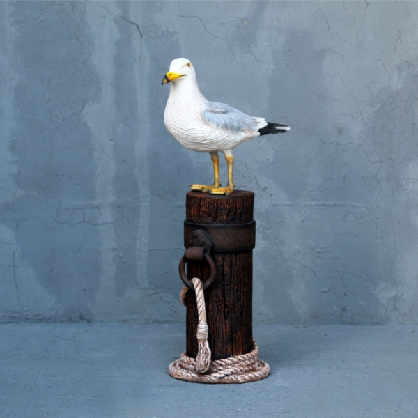 Seagull on Mooring Pole
