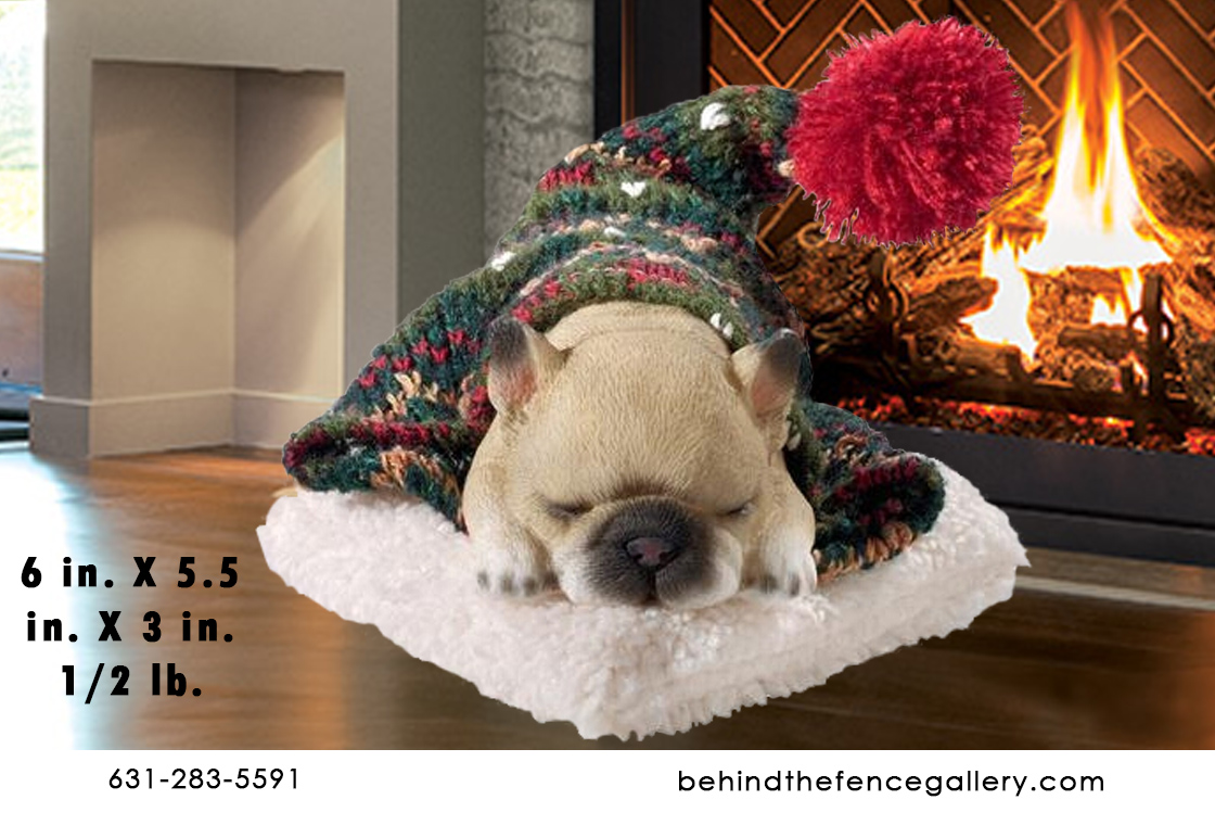 Cozy French Bulldog