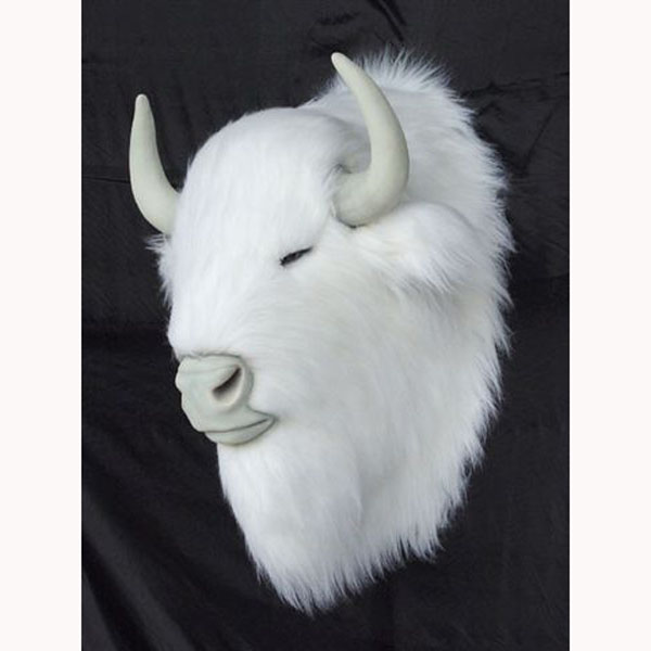 Albino Bison Head