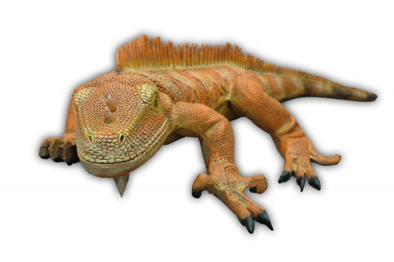 Iguana (New Color) 3ft. wide / Fiberglass